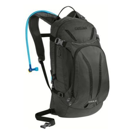 camelback bag