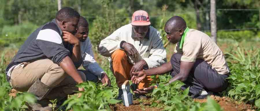 Photo courtesy of SoilCares Foundation