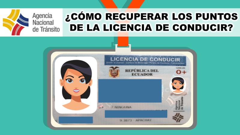 Cómo recuperar los Puntos de la Licencia de Conducir