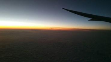 Morning, Wing, flight, dusk,