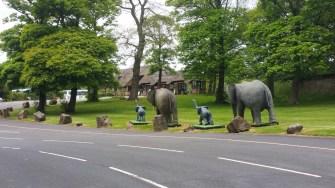 Knowsley Safari Park entrance2