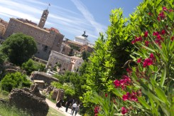 Forum Romanum 8