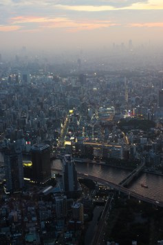 Tokyo from Above dusk 2