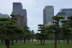 Tokyo imperial palace surroundings