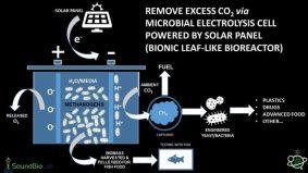 bionic-leaf-diagram-768x432