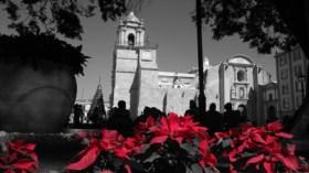 Catedral de Nuestra Señora De La Asunción @ Oaxaca