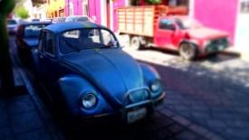 Street Life @ Oaxaca