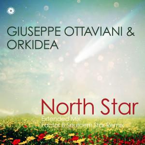 Giuseppe-Ottaviani-Orkidea-North-Star
