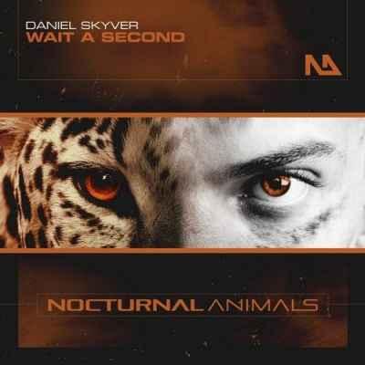 Daniel Skyver - Wait A Second