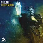 Sneijder – Chuck Norris