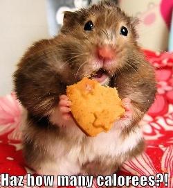 Har man ingen koll på kalorierna så riskerar man att misslyckas med sin viktnedgång