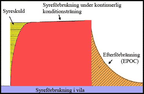 En schematisk bild över förhållandet mellan syreförbrukning under kontinuerlig konditionsträning (röd) och EPOC (orange). Bilden visar även syreförbrukning i vila (blå) och syreskulden som byggs upp i början (gul)