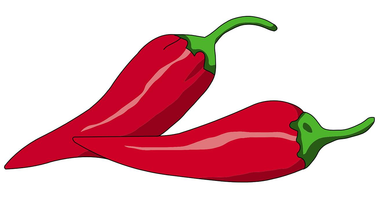 torkad chili istället för färsk