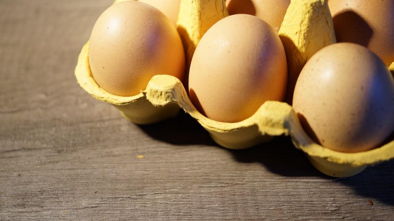 vad är nyttigast i ägget