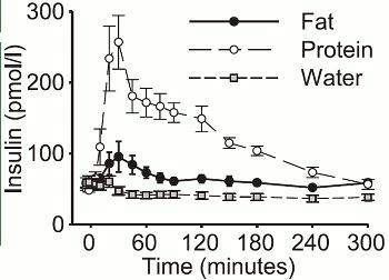 Även fett kan höja insulinet något