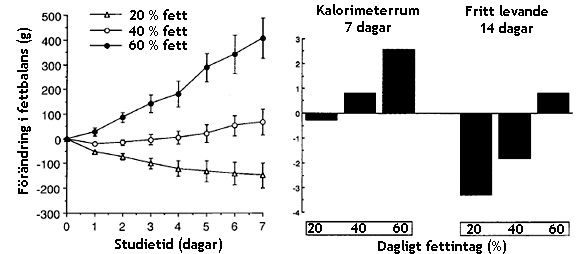 Resultatet från Andrews två studier. Notera hur kalorintaget och energibalansen ökar allt eftersom deltagarna fick fetare mat.