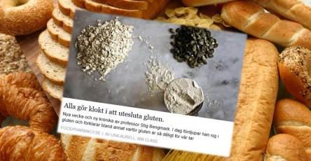 Är gluten farligt för kroppen