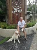Pawtel - they like dogs