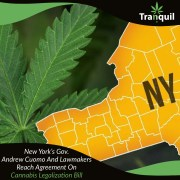 New York's Gov. Andrew Cuomo And Lawmakers Reach Agreement On Cannabis Legalization Bill