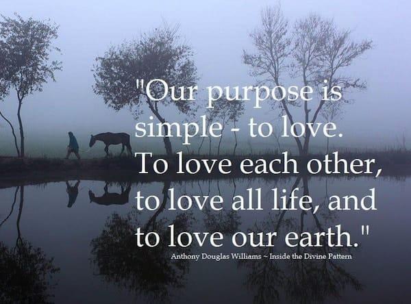 life-purpose quote