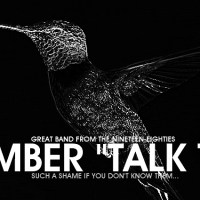 """""""Talk Talk"""" - Do you remember one of the great bands of the nineteen-eighties?"""