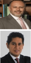 Guillermo Villaseñor-Tadeo and Pedro Palma-Cruz discusses the new Mexican Transfer Pricing Adjustment Regulations