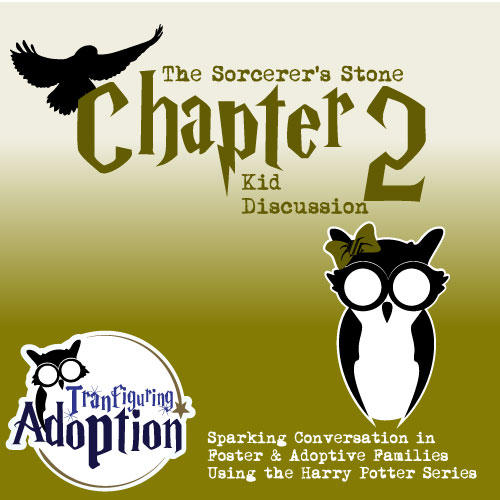 Transfiguring-Adoption-chapter2-kid-discussion-facebook