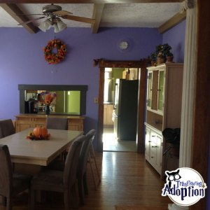 illinois-home-transfiguring-adoption-inside