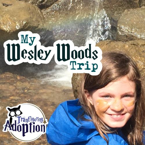 my-wesley-woods-trip