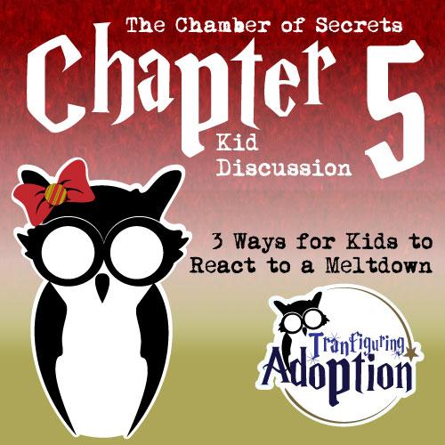 TA-chapter-5-chamber-of-secrets-foster-kids-social-media