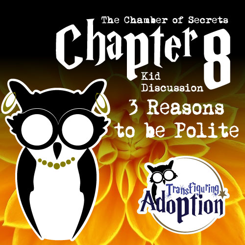 3-reasons-to-be-polite-Chapter-8-adoption