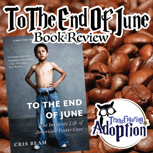 to-the-end-of-june-book-review-transfiguring-adoption-pinterest