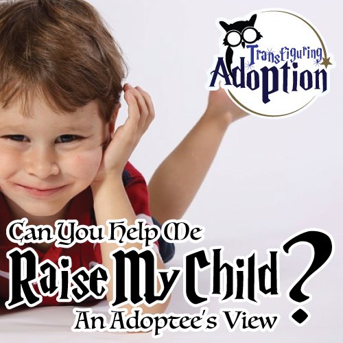 can-you-help-me-raise-my-child-adoptees-view-pinterest