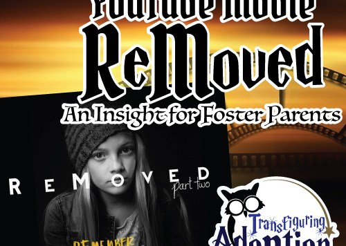 adoptees-review-youtube-movie-removed-insight-foster-parents-pinterest