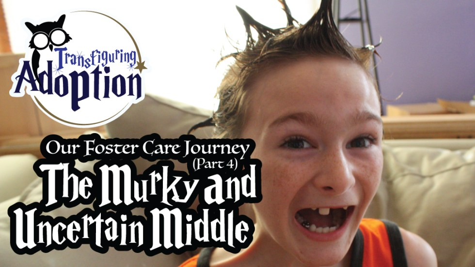 foster-care-journey-part-four-murky-uncertain-middle-adoption-facebook
