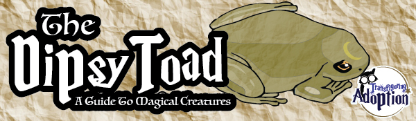dipsy-toad-guide-to-magical-creatures-transfiguring-adoption-header