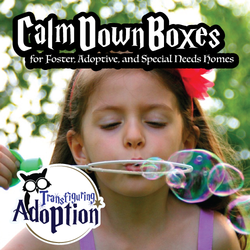 calm-down-boxes-foster-adoptive-special-needs-homes-square