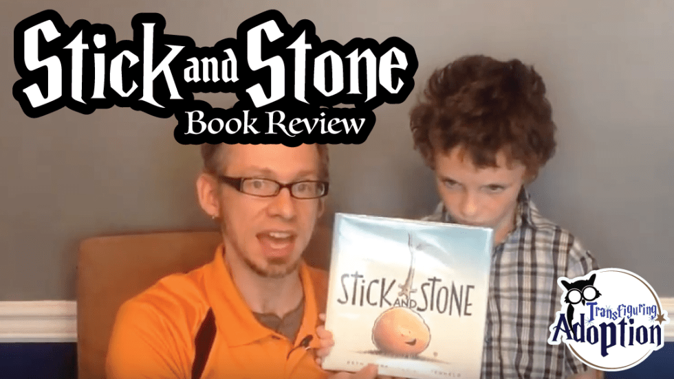 stick-and-stone-beth-ferry-book-review-rectangle