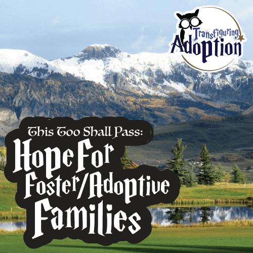 this-too-shall-pass-hope-foster-mom-transfiguring-adoption-square