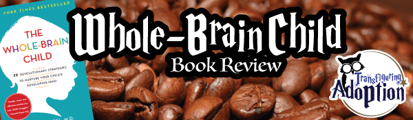 whole-brain-child-book-review-header