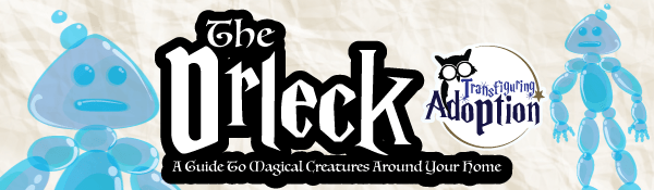drleck-magical-creature-transfiguring-adoption-header