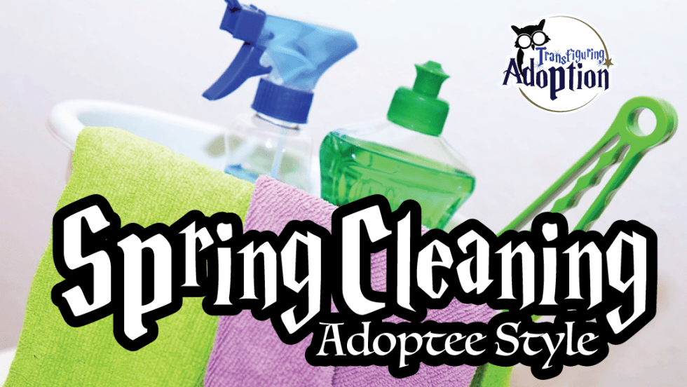 spring-cleaning-adoptee-style-rectangle