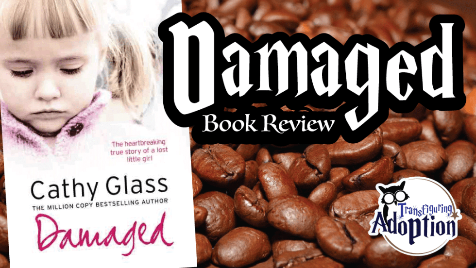 Damaged-cathy-glass-book-review