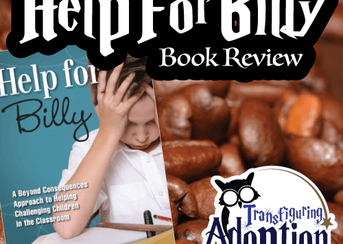 help-for-billy-heather-forbes-book-reiew-square