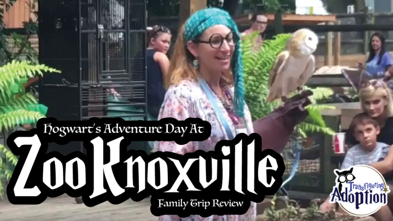 hogwarts-adventure-day-zoo-knoxville-transfiguring-adoption-rectangle