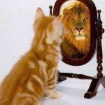 Jouw coach als spiegel van jezelf