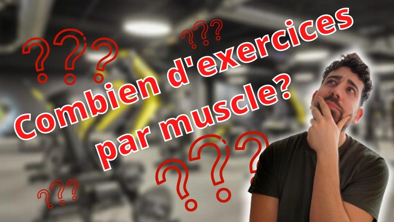 Combien d'exercices par groupe musculaire ?