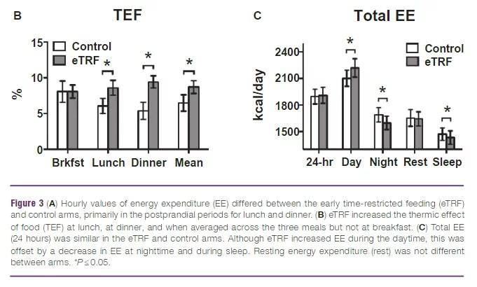 TEF et dépense calorique quotidienne du jeûne intermittent