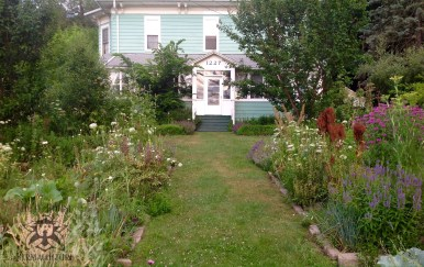 Inspiring front no-till gardens at Lillie House with food, herbs, flowers