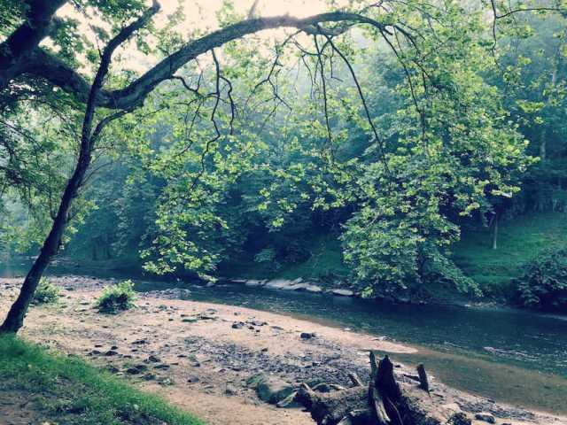 Patapsco river above Daniel's Dam